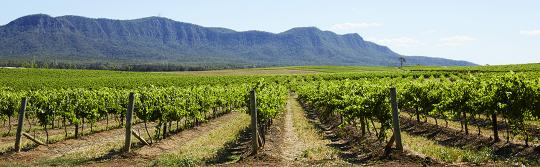 Drives and roadtrips, Hunter Valley